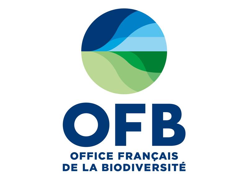 logo-ofb-actualite